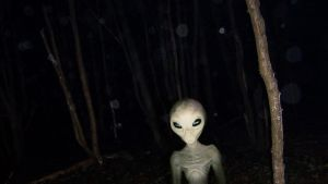 Alien in the woods by StArL0rd84