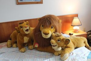 All my Douglas Simba by Laurel-Lion