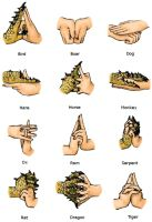 Hand Signs Colored by Ninja-Henrie