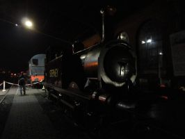 My lad in the sheds at Sheffield Park by Terrier55Stepney