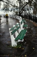 Carl Schurz Park by photoscot