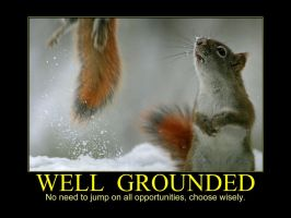 Well Grounded Squirrel by MichelLalonde