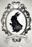 This is not Wonderland by ShyyBoyy