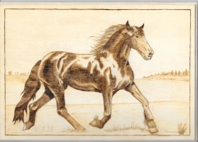 Horse Pyrography 2014 by boogie72