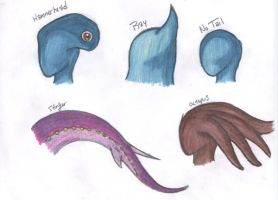 Sea Zora Head-Tail Specialties by Beasts-of-Blood