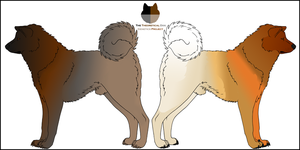 Dog Genetics Examples - Shades by Leonca