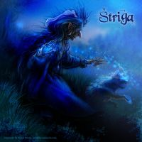 Shtriga, shapeshifting witch by npantic