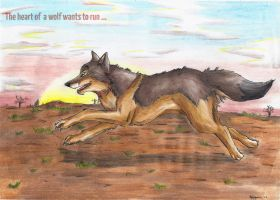 The Heart of a Wolf Wants Run by StarlightsMarti