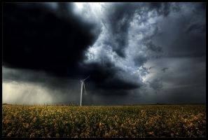 Storm arrives by zardo