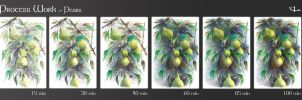 Process Work.- Pears by Chiba-Wolf