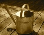 Watering Can by DesiaB