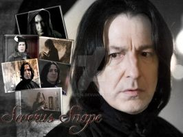 Life of Severus Snape by Phebe76
