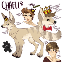 Chaell Reference by magniloquente