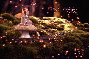 FAIRY FROM THE FOREST by TOVARDAMASO