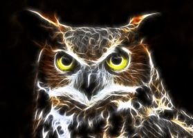 Great Horned Owl by CmdrChaos