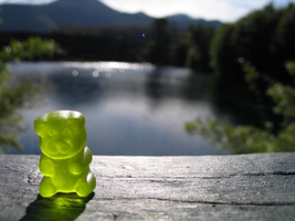 gummy bear by sboss