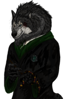Andrian_slytherin by AnsticeWolf