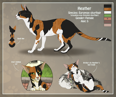 CS - Heather the ever smiling cat by Chaluny