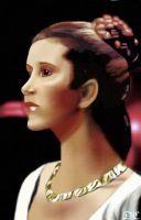 Princess Leia by David-c2011