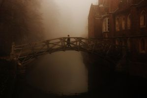 The Mathematical Bridge by Tinsella