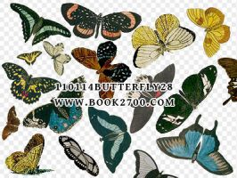 110114_butterfly28_by_eleven by eleven1627