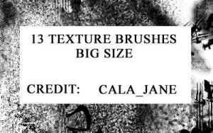 13 big size brushes by calajane