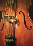 Cello 1 by spoof-or-not-spoof