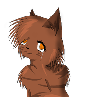 No, I'm Not Crying. -Leafpool- by Amerikat