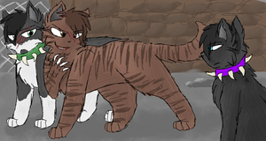 My name is Tigerstar... by CascadingSerenity