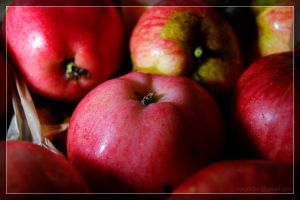 Apples by theperfectlestat