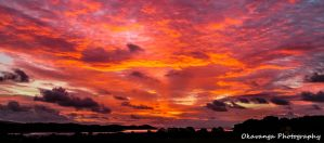Auchencairn Dawn by Okavanga