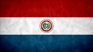 Paraguay Grunge Flag by SyNDiKaTa-NP