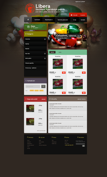 Chilli e-commerce by ArsiZyr