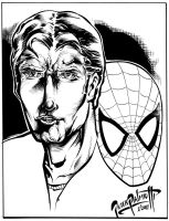 Peter Parker-Spiderman by PeterPalmiotti