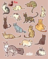 CATS sticker by mofuwa