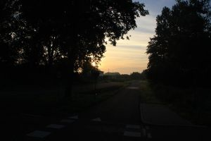 12-08-01 Sunrise 2 by Herdervriend