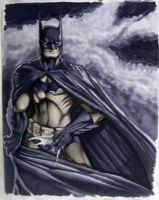 Batman Con Sketch HC 2010 by RichardCox