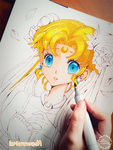 +Sailor Moon WIP+ by larienne