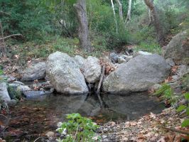 Creek 1 by Laire-Stock