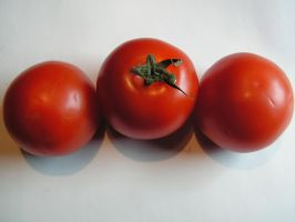 Tomatoes by stock1-2-3