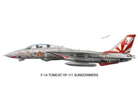 F-14 VF-111 Sun Downers by peter-pan03