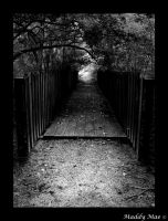 old bridge in B and W by shutter-bug664