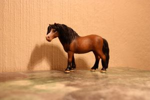 Dartmoor Pony - Schleich by CrocodileRawk