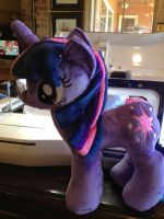 Twilight Sparkle will need a home by SweetwaterPony