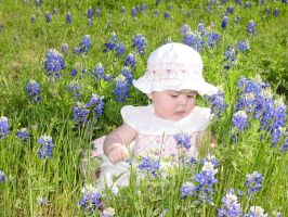 Ava in the Bluebonnets by CKing