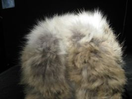 Rabbit Fur 1 by TRANS4MATICA