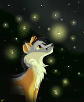 :~Fireflies~: by Dj-Aly