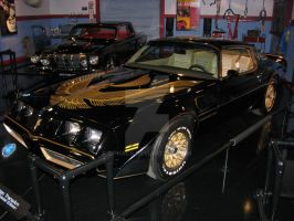 1981 Pontiac Trans Am by Qphacs