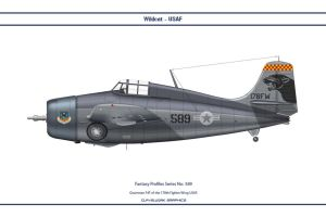 Fantasy 589 F4F 178th Fighter Wing by WS-Clave