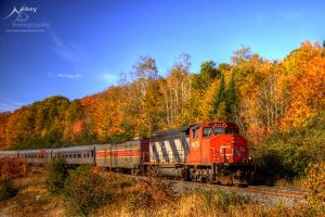 HDR Autumn Train by Nebey